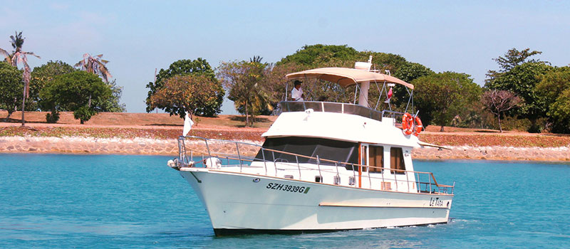 CRUISING ALONG SOUTHERN ISLANDS FOR FISHING WITH TARA M SPEED BOAT (4 HOURS WEEKEND AND PH)